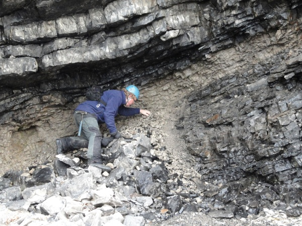 fossil-hunter-hard-hats-required