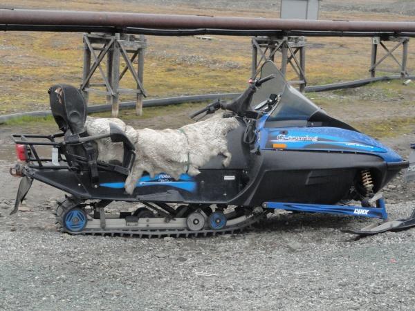 longyearbyen-svalbard-snowmobile-fur-seat
