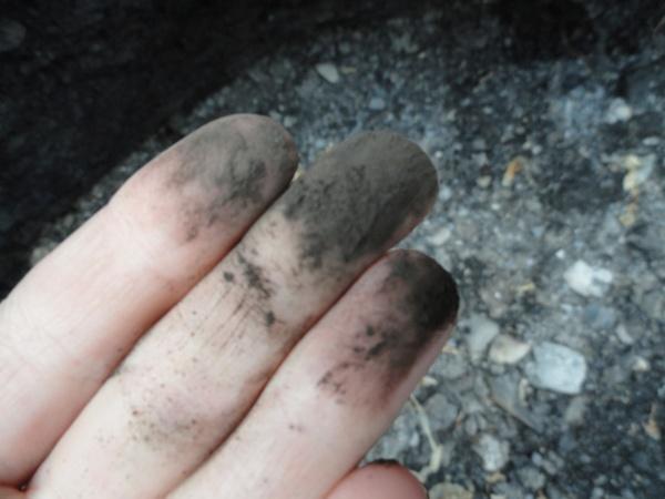 oil-dust