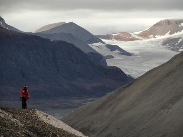 polar-bear-guard-glacier