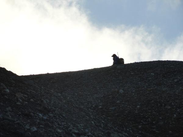 polar-bear-spotter