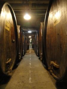 korbel-wine-barrels