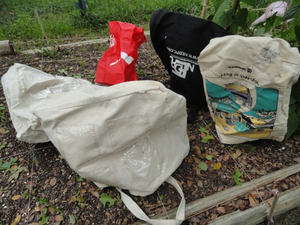 austin-basil-reusable-bags-frost-ready