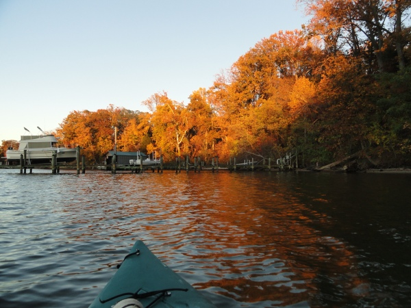 saint-leonard-creek-maryland-autumn-changing-leaves-water