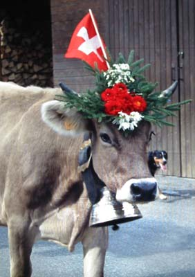 switzerland-cow-bell