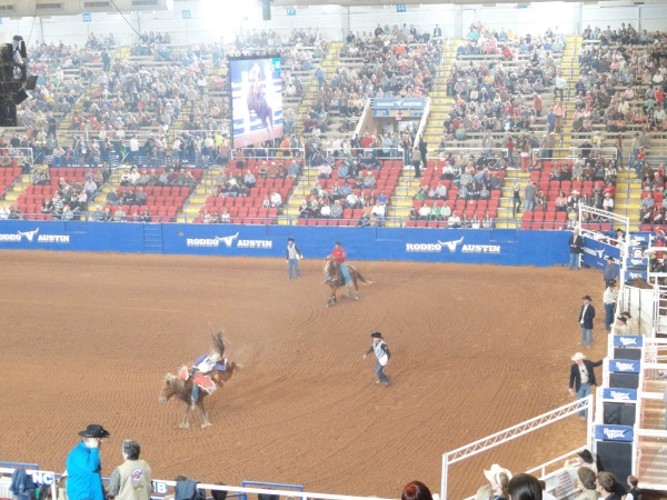 austin-rodeo-horse-bucking