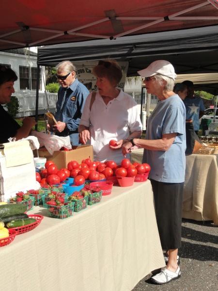 serious-negotiations-amelia-island-farmers-market