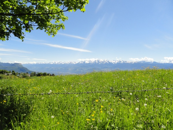 french-meadow-grenoble-plateau-guillet