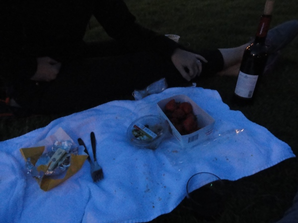 evening-picnic-geneva-switzerland
