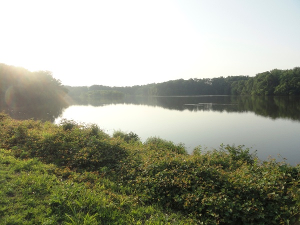 lake-accotink