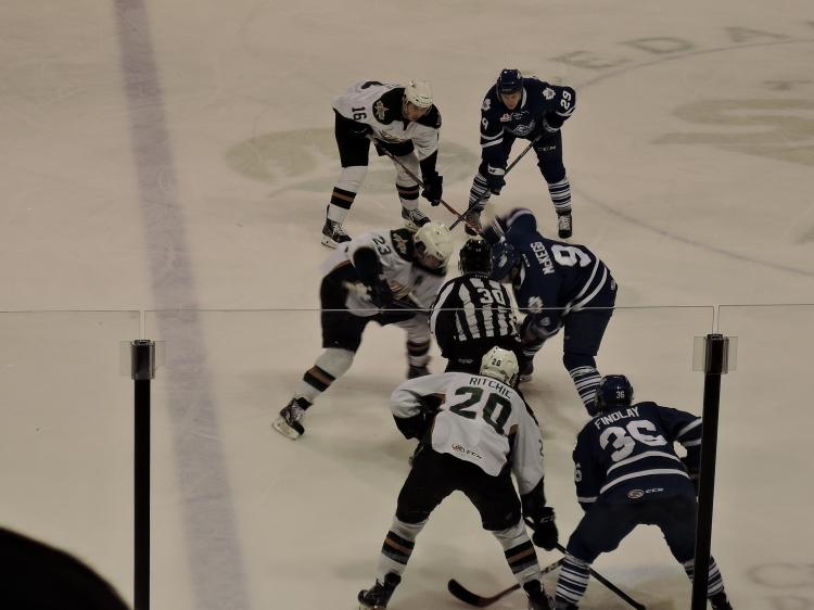 Texas-Stars-hockey-in-action