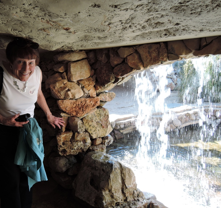 lbj-wildflower-center-behind-the-waterfall