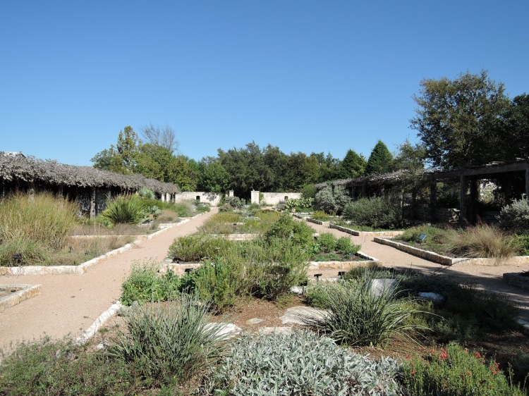 lnj-wildflower-center-yard-landscaping