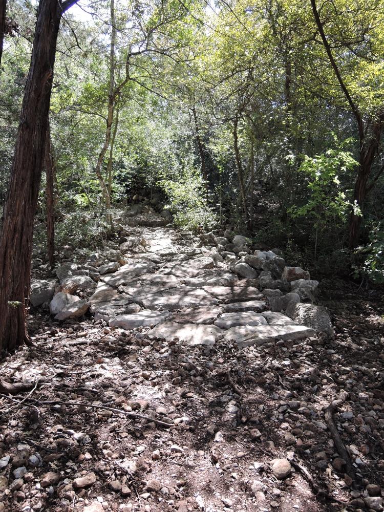 off-the-beaten-path-lbj-wildflower-center