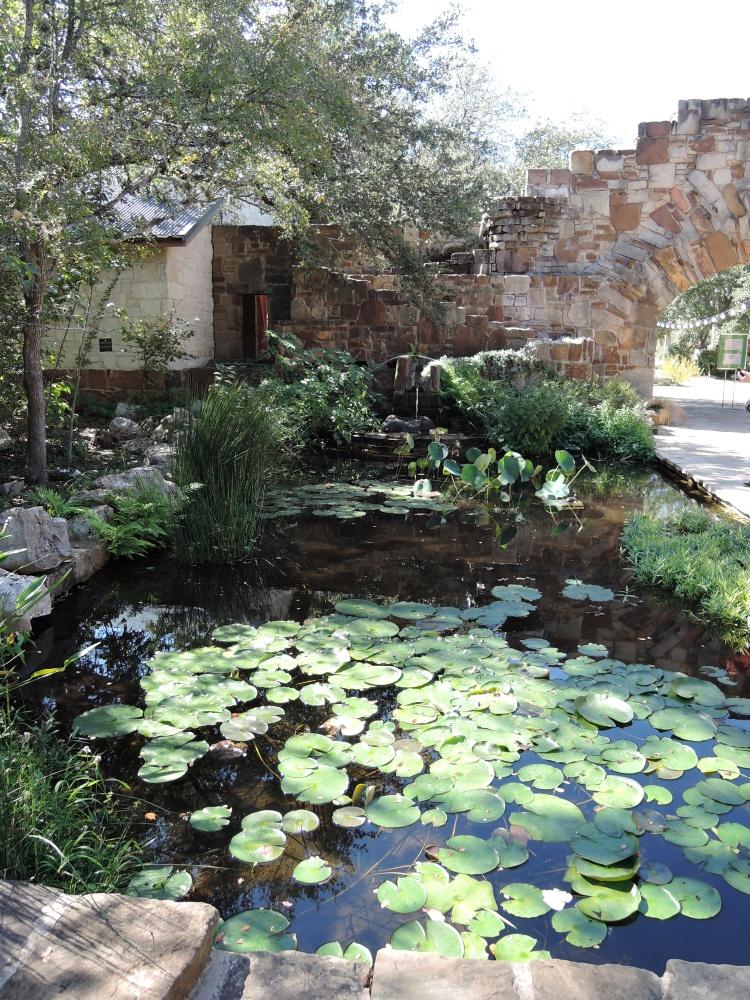 turtle-pond-lbj-wildflower-center